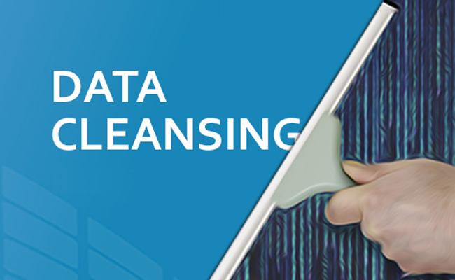 Image result for Data Cleansing Services